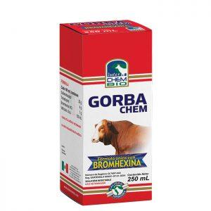 Gorbachem, tratamiento de infecciones del tracto respiratorio y microorganismos Gram positivo y Gram negativo