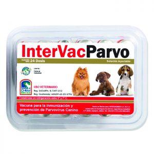 Intervac Parvo, vacuna para perros contra parvo virus