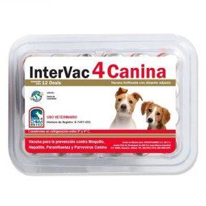 Medicamento Veterinario Vacunas para Perro