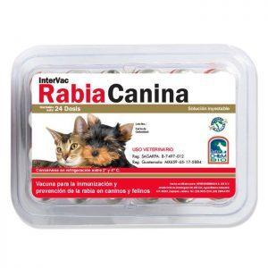 Intervac Rabia Canina, Vacuna contra la Rabia de perros y gatos